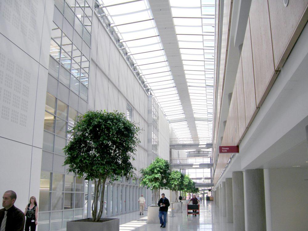 Atrium Blinds at HSE Headquarters